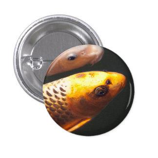 Golden Koi Fish 1 Inch Round Button