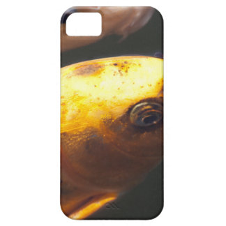 Golden Koi Fish Case For The iPhone 5