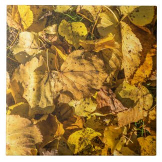 Golden leaves ceramic photo tile