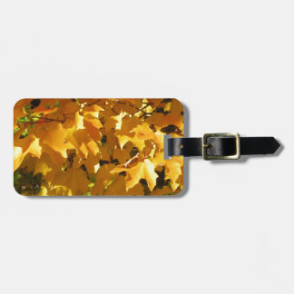 Golden leaves luggage tag