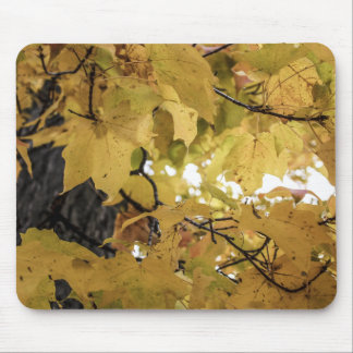 Golden Leaves Mouse Pad