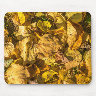 Golden leaves mousepad