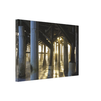 Golden Light Shines Through Canvas Print