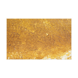 Golden-like ground in Yellowstone Canvas Print