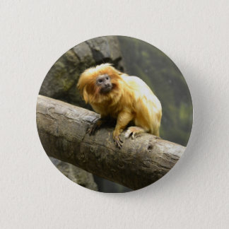 Golden Lion Tamarin 2 Inch Round Button