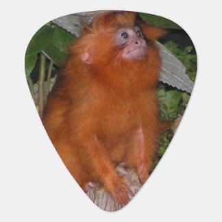 Golden Lion Tamarin Guitar Pick