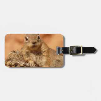 Golden Mantled Ground Squirrel Luggage Tag