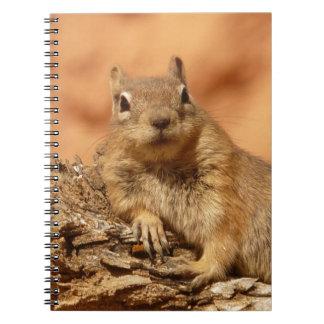 Golden Mantled Ground Squirrel Notebook