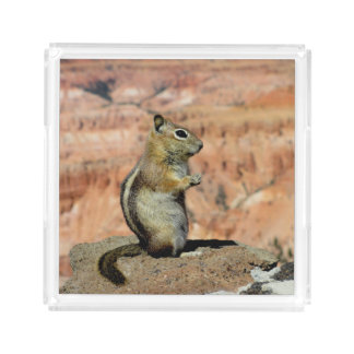 Golden Mantled Ground Squirrel Serving Tray