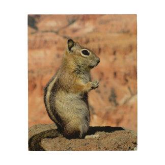 Golden Mantled Ground Squirrel Wood Prints