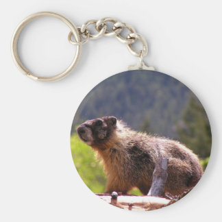 Golden Marmot Basic Round Button Keychain