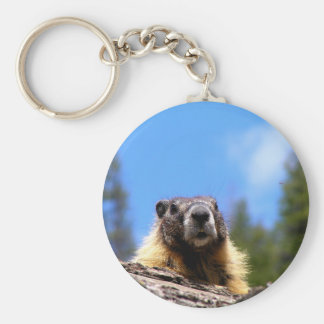 Golden Marmot in Canada Basic Round Button Keychain