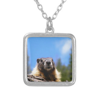 Golden Marmot in Canada Silver Plated Necklace