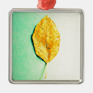 Golden Mint by JP Choate Metal Ornament