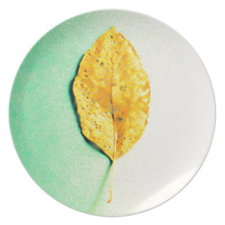 Golden Mint by JP Choate Plate