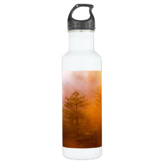 Golden Morning Glory Forest 710 Ml Water Bottle