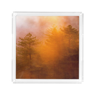 Golden Morning Glory Forest Acrylic Tray