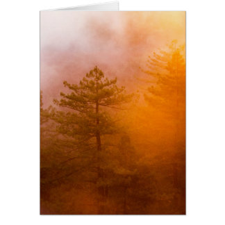 Golden Morning Glory Forest Card