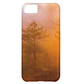 Golden Morning Glory Forest Case For iPhone 5C
