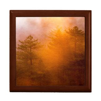 Golden Morning Glory Forest Gift Box