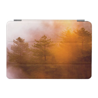 Golden Morning Glory Forest iPad Mini Cover