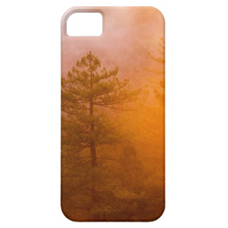 Golden Morning Glory Forest iPhone 5 Covers
