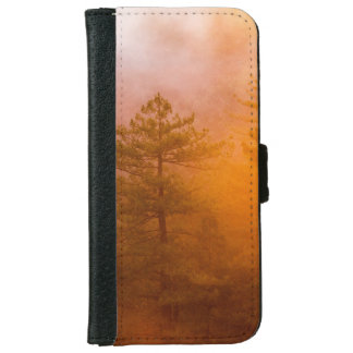 Golden Morning Glory Forest iPhone 6 Wallet Case