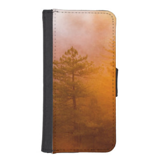 Golden Morning Glory Forest iPhone SE/5/5s Wallet Case