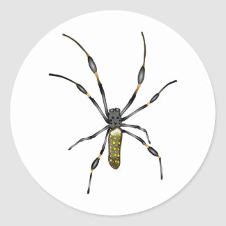 Golden Orb Spider Classic Round Sticker