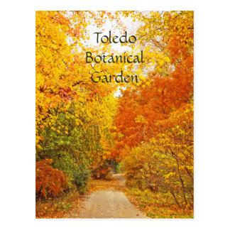 """GOLDEN PATH-TOLEDO BOTANICAL GARDEN"" POSTCARD"