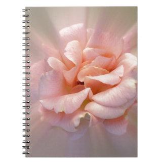 Golden pink notebook
