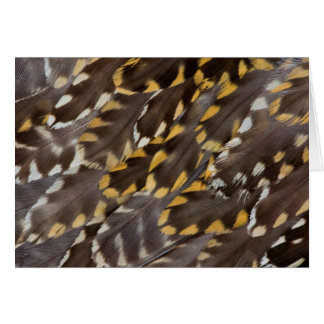 Golden Plover Feathers Card