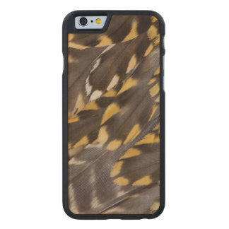 Golden Plover Feathers Carved Maple iPhone 6 Case