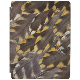 Golden Plover Feathers iPad Cover