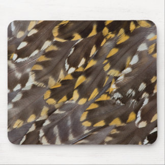 Golden Plover Feathers Mouse Pad