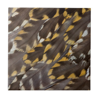 Golden Plover Feathers Tile
