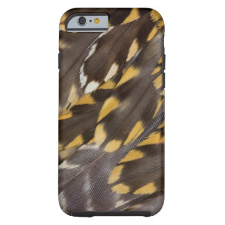 Golden Plover Feathers Tough iPhone 6 Case