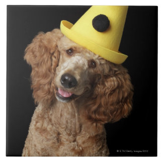 Golden Poodle Dog wearing a yellow clown hat Tile