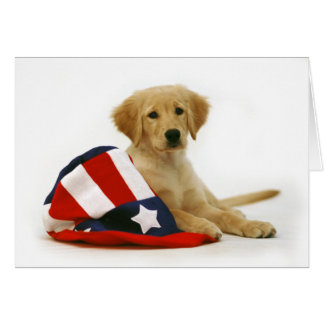 Golden Puppy and Uncle Sam Hat Card