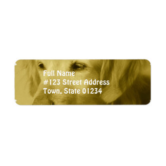 Golden Puppy  Mailing Labels