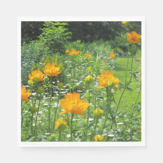 Golden Queen Trollius, Secret Spring Garden Paper Napkin