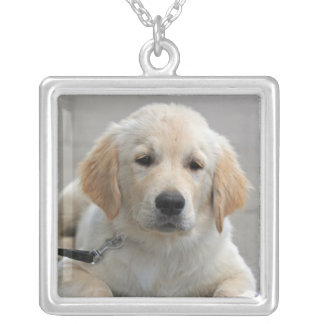 Golden Reriever puppy dog cute beautiful photo Silver Plated Necklace