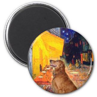 Golden Retriever 3 - Terrace Cafe 2 Inch Round Magnet