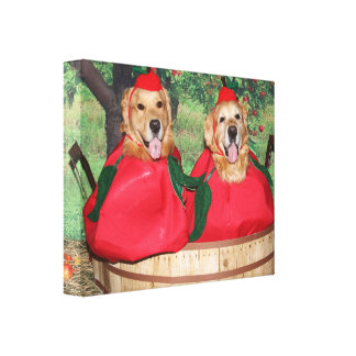 Golden Retriever Apples in a Basket Canvas Print
