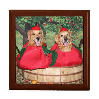 Golden Retriever Apples in a Basket Gift Box