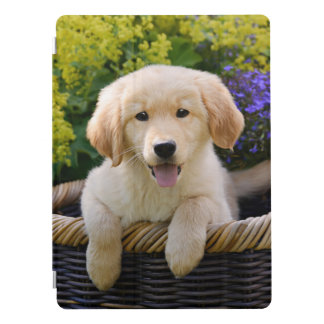 Golden Retriever Baby Dog Puppy Funny Pet Photo * iPad Pro Cover