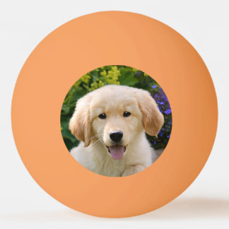 Golden Retriever Baby Dog Puppy Funny Pet Photo * Ping Pong Ball
