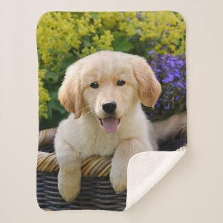 Golden Retriever Baby Dog Puppy Funny Pet Photo Sherpa Blanket