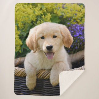 Golden Retriever Baby Dog Puppy Funny Pet Photo ,, Sherpa Blanket