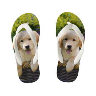 Golden Retriever Baby Dog Puppy Funny Photo - Kids Kid's Flip Flops